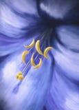 Blue yellow flower Stock Photo