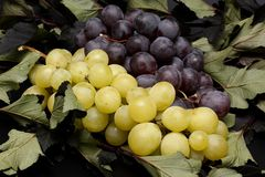 Blue and yellow grapes Royalty Free Stock Images