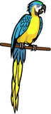Blue and Yellow Macaw. Illustration a bright blue and yellow macaw parrot sitting on a wooden perch Stock Photo