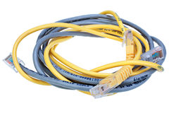 Blue and yellow network cables isolated on white background Royalty Free Stock Image