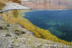 Blue, yellow and orange water of hot springs, Yellowstone, Wyomi Stock Photography