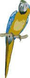 Blue and yellow parrot Royalty Free Stock Photos