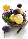 Blue and yellow plums Stock Images