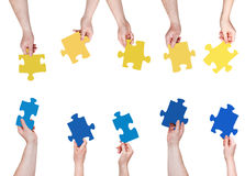 Blue and yellow puzzle pieces in people hands Stock Image