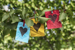 Blue, yellow and red paper notes with heart shapes. Hanging on a tree. Close up Royalty Free Stock Photography