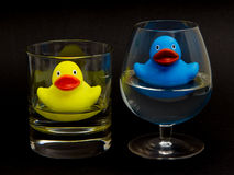 Blue and yellow rubber duck in glasses Royalty Free Stock Photo