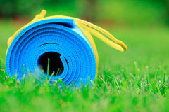 Blue yoga mat on green grass Stock Image