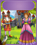 Bluebeard - greybeard - Prince or princess - castles - knights and fairies - illustration for the children. The happy and colorful illustration for the children Royalty Free Stock Photo