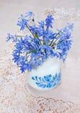 Bluebel Royalty Free Stock Photos