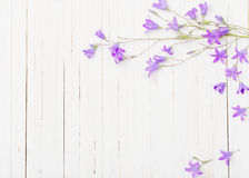 Bluebel flowers om  wooden background Stock Photo