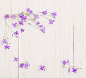Bluebell flowers om wooden background Stock Photo