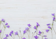 Bluebell flowers om wooden background Stock Images