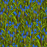 Bluebell flowers pattern. Stock Photography