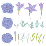 Bluebell, geranium flowers, sagebrush leaves and buds set. Rustic floral design elements Stock Photo