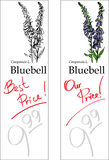 Bluebell - two price tags. For florist shop Stock Photography