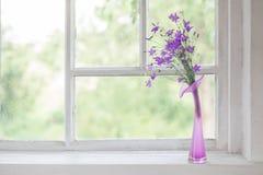 Bluebell in vaso sul davanzale Fotografie Stock