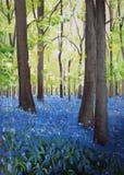 Bluebell woods. Oil painting of bluebell woods stock illustration