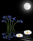 bluebells κρίνος λουλουδιών Στοκ Εικόνες
