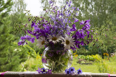 Flowers in a vase Royalty Free Stock Images