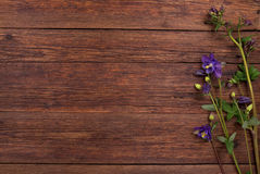 Bluebells flowers on wooden table. Top view, copy space. Royalty Free Stock Image