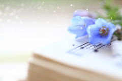 Bluebells on a Music Book Royalty Free Stock Photography