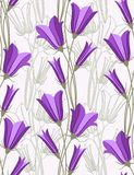 Bluebells. Seamless background. Vector illustration Stock Photos