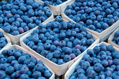 Blueberrie in Baskets Stock Images