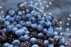 Blueberrie e blackberrys frescos Imagem de Stock