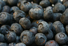 Blueberries. Bunch of blueberries Royalty Free Stock Photo