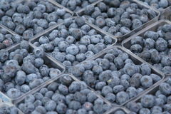 Blueberries. At farmer's market new york Stock Photos
