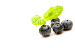 Blueberries. Isolated over a white background a Stock Image