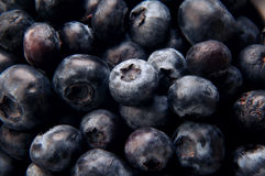 Blueberries. Close up shot of blueberries Royalty Free Stock Image