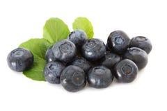 Free Blueberries Stock Photos - 19923443