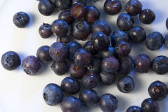 Blueberries 2. Delicious bluey red berries on white background. Tasty wholesome forest fruits Stock Photos