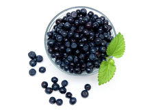 Blueberries. Fresh Blueberries in bowl isolated on a white bsckground Stock Photos
