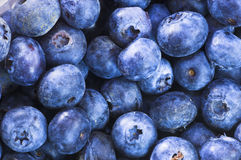 Blueberries. Full frame image of juicy, fresh blueberries royalty free stock image