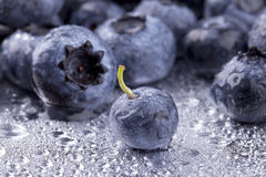 Blueberries Royalty Free Stock Photos