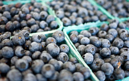 Blueberries. Closeup of fresh blueberries on sale at a farmers market royalty free stock photos