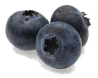 Blueberries. A group of three blueberries photographed in a studio against a white background.Selective focus on the closest blueberry Royalty Free Stock Photography