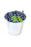 Blueberries. Studio shot of a bucket full of blueberries Stock Photos