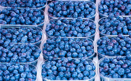 Blueberries. Royalty Free Stock Photography