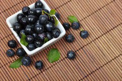 Blueberries. In smoll white bowl closeup with leaves Stock Photo