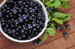 Blueberries. In white bowl with blueberry twigs closeup Stock Images