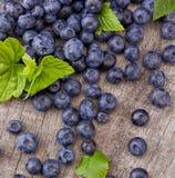 Blueberries Stock Photos