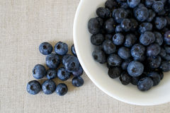Free Blueberries Stock Photo - 29431500
