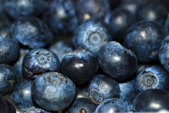 Blueberries. A close up photograph of a punnet of fresh blueberries Stock Photos