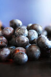 Blueberries. Fresh ripe blueberries in a blue ball Royalty Free Stock Image