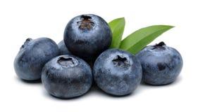 Free Blueberries Royalty Free Stock Image - 62136856