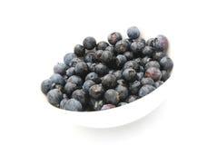 blueberries Стоковые Изображения