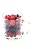 Blueberries ad raspberries Stock Image